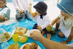 Family having picnic on beach