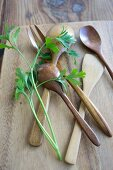 Wooden cutlery with sprigs of parsley