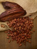 Cocoa pods and cocoa beans