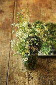 Blühende Bio-Kamille in einem Glas