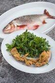 Wasserkräutersalat mit frittiertem Fisch