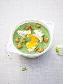 Cream of spinach soup with a poached egg and croutons