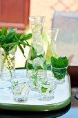 Lemonade with fresh mint