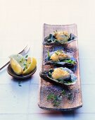 Oysters on spinach, topped with a cheese sauce and baked