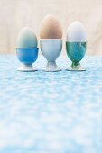 Drei verschiedene Nesteier (grün, braun, weiss) in Eierbechern