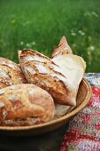 Assorted rustic breads in a bread basket on a picnic table