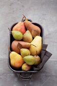 Verschiedene Birnensorten in Reine
