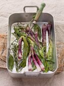 Grilled, red spring onions with herbs