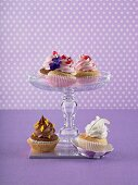 Various cupcakes on and in front of a cake stand