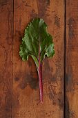 A beetroot leaf on a wooden surface