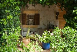 A view from a garden of a bench against the wall of a Mediterranean house made of natural stone with a vine-clad pergola