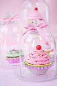 Cupcakes under glass covers with ribbons