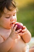 A small child trying out a peach