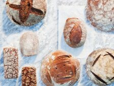 A variety of loaves, on paper and on a marble surface, dusted with flour