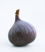 A red fig