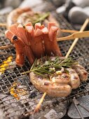 Barbecued sausage skewers on the barbecue
