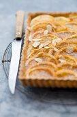 Orange tart with slivered almonds