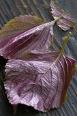 Fresh shiso leaves on a wooden surface (close-up)