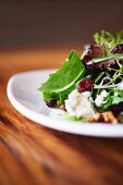 Mixed Green Salad with Cranberries, Walnuts and Goat Cheese