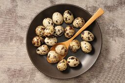 Quail's eggs in a bowl with a wooden spoon