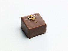 Zoes Chocolates; Chocolate Hazelnut Cookie