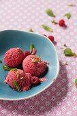 Raspberry Ice Cream with Fresh Raspberries and Mint