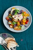 Grilled halloumi on a tomato and herb salad
