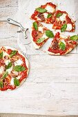 Pizzas with tomatoes, mozzarella, basil and grilled baby calamari