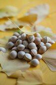 Gingko nuts between gingko leaves