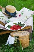 A deckchair with cushions, a straw hat and redcurrants, next to a picnic basket