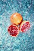 Pink grapefruit in water