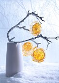Slices of orange in spun-sugar cages hanging from twigs (festive)