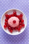 A fresh scoop of redcurrant ice cream, viewed from above, with redcurrants