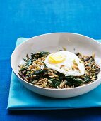 Orzo and spinach hach with fried egg