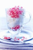 Coconut sorbet with pomegranate seeds