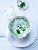Green herb soup with lemon cream