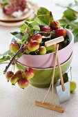 Ornamental apples in a stack of bowls with a mini rake and a mini spade