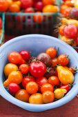 Colourful tomatoes