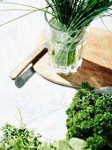 Assorted fresh herbs for Frankfurt 'Green Sauce'