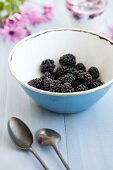 Blackberries in a blue bowl