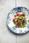 cherry potato and radish salad, spring, gluten free