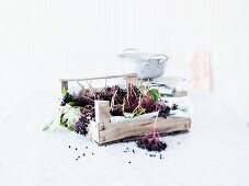 Elderberries in a crate