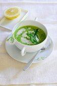 Wild garlic soup with sour cream