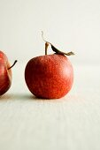 Two Royal Gala apples