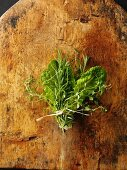 A bunch of herbs with lettuce leaves on a wooden board