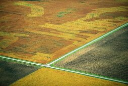 Fields intersected