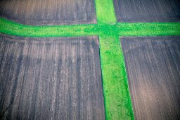 Cross in field