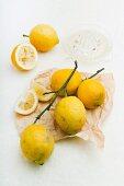 Sicilian lemons: whole, halved and juiced