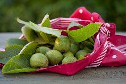 Green walnuts in a cloth