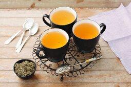Silverweed tea and dried tea leaves